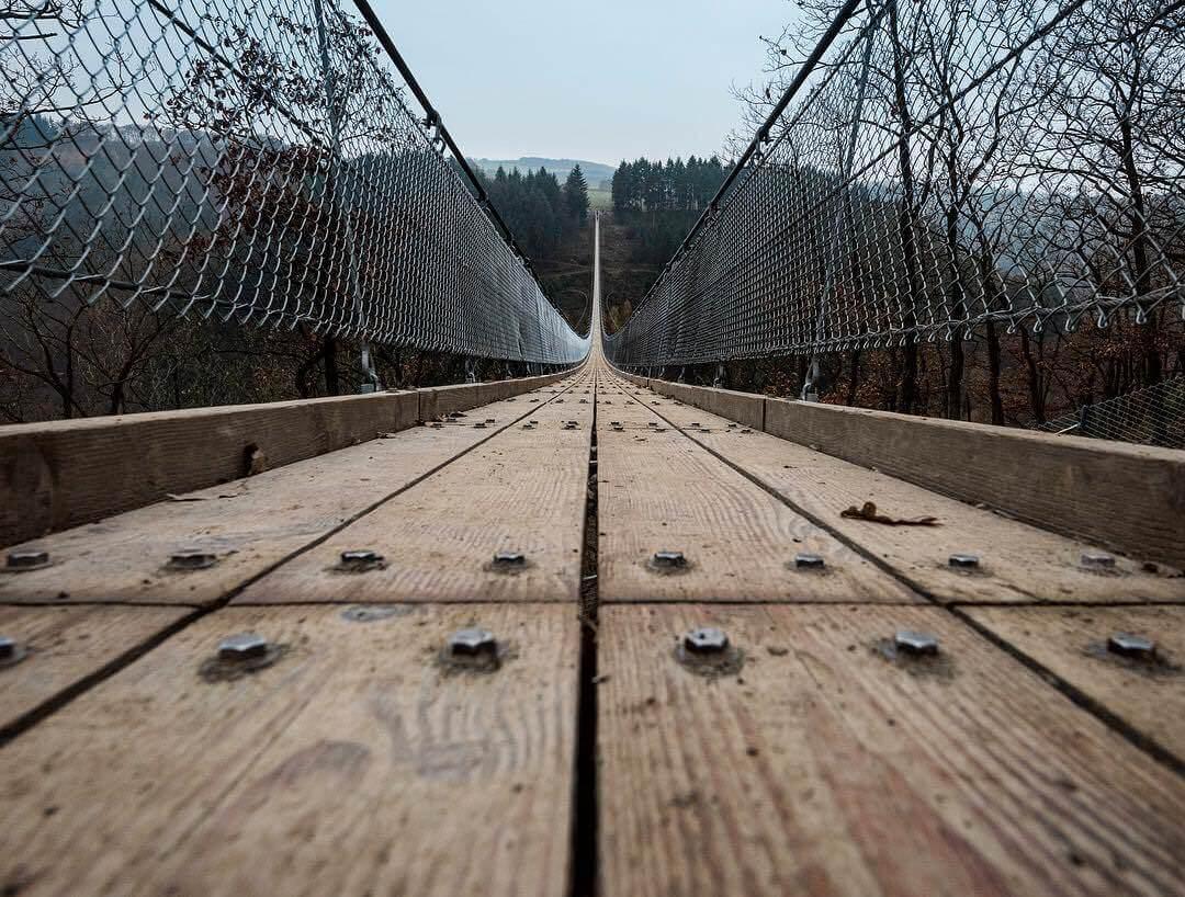 Geierlay rope bridge